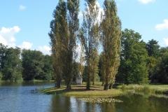 Rousseau-Insel in Wörlitz